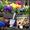 Устройство цветников,  посадка цветов  #544427