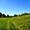 Продам земельный участок в Подгорцах от 12 соток до 36 #649488
