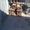 Балка двутавровая 40К2 #973220