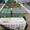 Канализация коттеджного поселка,  очистные сооружения Топас #417715