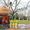 Опрыскивание деревьев от болезней и вредителей. Обработка сада #419923