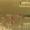 Аквариумные испанские тритоны с доставкой!  #1227555