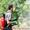 Обработка сада от болезней и вредителей  #1319563
