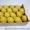 Продаем лимоны из Испании #1328955