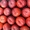 Нектарин. Прямые поставки из Испании #1410530
