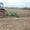 Глубокорыхлитель универсальный ГРУ 1,  8 ЕКО для тракторів мтз-80,  82  #1524815