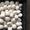 Продам гриби печериці (шампіньони) з власного виробництва #1653607