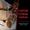 Денежная магия Киев. Ритуал «Золотой Ключ Царя Соломона». Сильнейшая Ритуальная  #1711655
