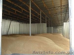 Ангары для хранения зерна, проектирование, изготовление, монтаж. - Изображение #1, Объявление #145172