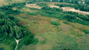Земельные участки 5,388 га на границе с пгт Козин Обуховского района - Изображение #6, Объявление #1686348