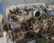 Ремонт двигателей ИСУЗУ., Объявление #217266