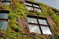 ландшафтный дизайн от Патоля : вертикальные сады и водоемы на стенах