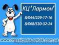 Дрессировка собак с заботой и любовью Киев тел.: (068)53-03-224,  (044)229-17-16