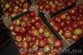 яблоки с Польши!