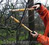 Обрезка плодовых деревьев,  обрезка и обработка сада