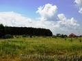 11 га под строительство,  Березовка,  Киев 17 км,  возле леса,  трасса Е-40 (на Евр
