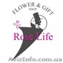 Розы. розы с доставкой киев. недорогие розы. заказать розы. где купить розы недо