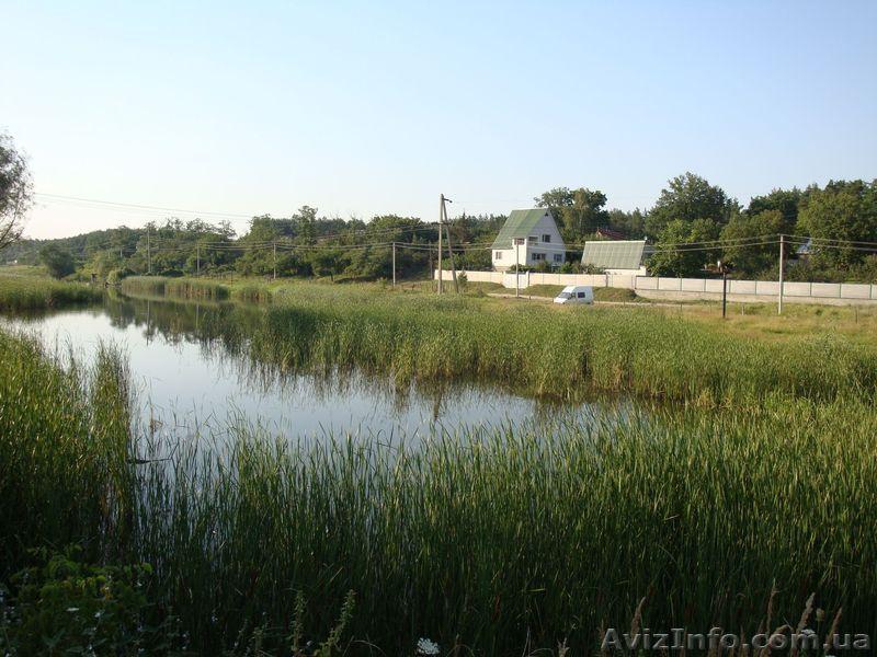 Украинское снятое на телефон 3 фотография