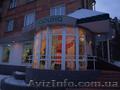 Новогоднее украшение дома,световое оформление витрин,фасадов,зданий - Изображение #2, Объявление #981117