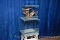 Продам террариум акватеррариум стекло из разных  материалов - Изображение #2, Объявление #1067472