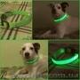 Светящийся ошейник для собак LED  КИЕВ