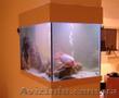 Вырезаем стекло для аквариумов