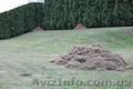 Вычесывание газона, аэрация газона - Изображение #2, Объявление #855792
