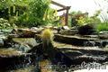 Ландшафтный дизайн, озеленение - Изображение #6, Объявление #420602