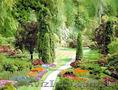 Саженцы для вашего сада