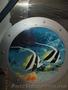 Картина Рыбы в аквариуме