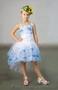 Продажа та прокат дитячих плать, суконь.  - Изображение #8, Объявление #1067051