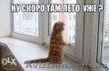 Срочный ремонт окон,  дверей,  ролет Киев,  Харьковский,  Позняки,  Осокорки,  без вых