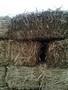Кули из камыша, снопа, утеплитель - Изображение #3, Объявление #1307151