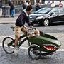 Детские велокресла,  велоприцепы HAMAX,  BEBEHUT COMBO
