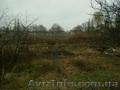 Продам самый лучший Земельный участок село Гора Бориспольский район - Изображение #2, Объявление #1395755