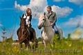 Конные прогулки Киев. Конная прогулка  на лошадях. Конные прогулки отдых., Объявление #1595051