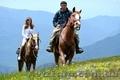 Конные прогулки Киев. Конная прогулка  на лошадях. Конные прогулки отдых. - Изображение #2, Объявление #1595051