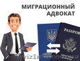 Миграционный адвокат,  помощь иностранцам,  ВНЖ,  ПМЖ