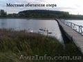 Жилой кирпичный дом на берегу озера. Беларусь - Изображение #9, Объявление #1600465