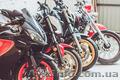 Ремонт,  диагностика ходовой части (подвески) мотоциклов,  скутеров