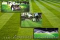 Вычесывание газона. Уход за газоном