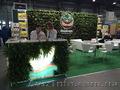 Фитодизайн, ландшафтный дизайн, интерьерное и экстерьерное озеленение в Киеве - Изображение #2, Объявление #1612533