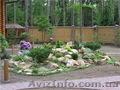 Фитодизайн, ландшафтный дизайн, интерьерное и экстерьерное озеленение в Киеве - Изображение #3, Объявление #1612533