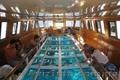Прогулка по морю на корабле со стеклянным дном