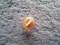 Продам золотое кольцо-печатку (б/у)