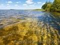 Отдых на Шацких озерах + Волынь, День Независимости!, Объявление #1605703