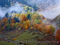 Осенние выходные в Карпатах . Драгобрат + Львов, Объявление #1603242