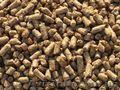 Гранульовані висівки ячмінно-вівсяні кормові