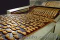 Продается действующая кондитерская фабрика (Украина).