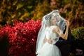 Видео и фотосьемка свадеб